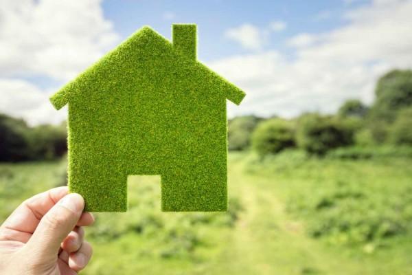 Nachhaltigkeitskriterien-in-der-Massivholz-M-belbranche