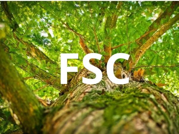 FSC-Zetifikat-Logo